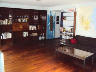 Phenomenal Entire Flat in BELGRANO (up to 9 people - Capital Federal District vacation rentals