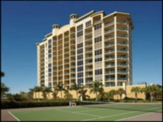 Large Fort Myers Condo (Monthly rental or longer) - Masaryktown vacation rentals