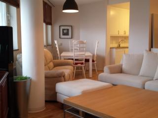 Amazing spacious apartment - Stockholm vacation rentals