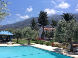 Olive Garden Chalet 1 - Lapta vacation rentals