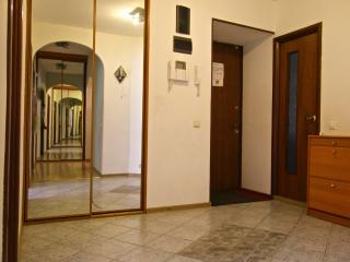 Large apartment near the Kremlin - Moscow vacation rentals
