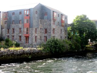 The Erin Suite - Granary Suites - Galway vacation rentals
