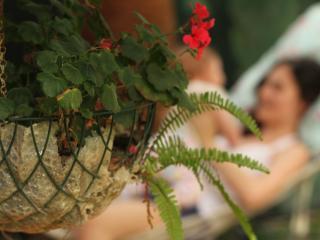 Mila Pension Cirali - Antalya vacation rentals