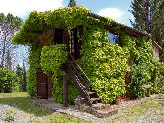 La Stellina - Bucine vacation rentals