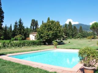 Tuscany Villa near Lucca (BFY13589) - Castelnuovo dell'Abate vacation rentals