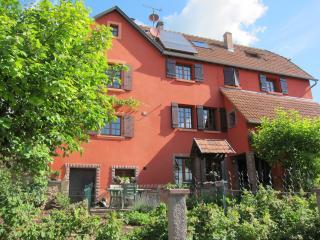 Gîte La Ferme prox Strasbourg - Bas-Rhin vacation rentals