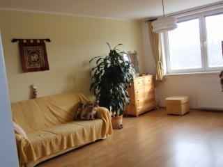 Charming sunny apartment - Bratislava vacation rentals