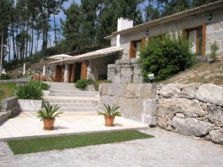Villa(with 23700m2 green areas) at 40km from Porto - Marco de Canaveses vacation rentals