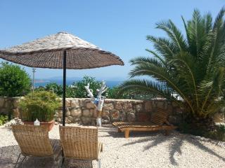 Apartment mit phantastischen Meerblick - Cesme vacation rentals