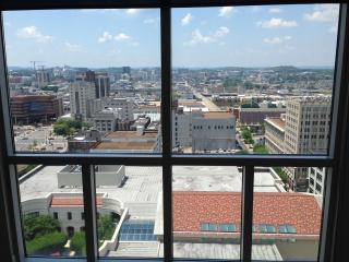 Downtown Penthouse on the 22nd Floor. - Gallatin vacation rentals