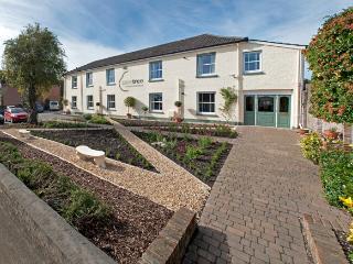 Peartree Apartments - Salisbury vacation rentals