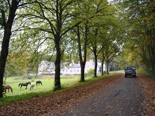 Manoir du Sartay - Bastogne vacation rentals