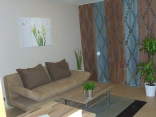 Appartement Cassiopaia*** - Baden-Baden vacation rentals