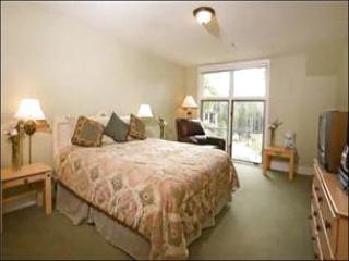 Blue Mesa Lodge - Great Value (6057) - Telluride vacation rentals