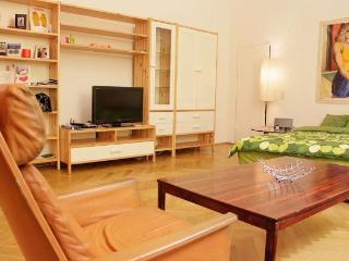BEST LOCATION + Cheapest in Vienna!! - Vienna vacation rentals