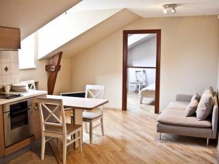 Cozy studio in the center - Riga vacation rentals