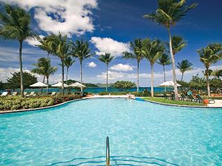 Ritz-Carlton Club 2BR Residences, Sleeps 4 - East End vacation rentals