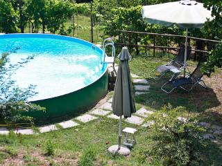 Tuscan country apartament  in a lovely olive grove - Uzzano vacation rentals