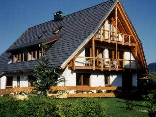 4-star-holiday house Rösslewiese studio 2 - Hinterzarten vacation rentals