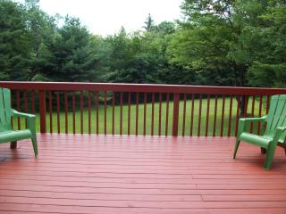 Catskills home near Roscoe New York - Livingston Manor vacation rentals