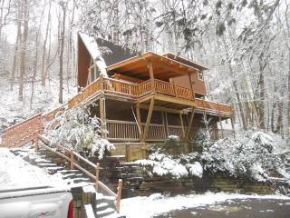 919 Great Priced Cabin Gatlinburg CK MAY SPECIALS - Gatlinburg vacation rentals