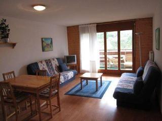 Portes du Soleil - Suisse - appartement 60m2 - Portes du Soleil (Switzerland) vacation rentals
