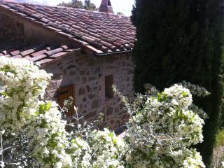 TUSCANY country house - Scansano vacation rentals