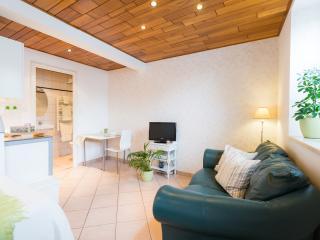 Cosy studio in Ohlungen near Haguenau / Strasbourg - Bas-Rhin vacation rentals