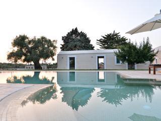 Villa Ulivo La più bella della Valle d' Itria - Ceglie Messapica vacation rentals