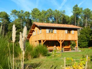 Holiday villa in Vielle Saint Girons - Vielle-Saint-Girons vacation rentals