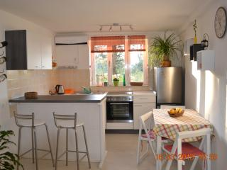 Apartment Lozica - Korcula Town vacation rentals