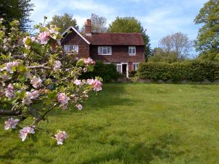 Cottage near Ditchling, Lewes & South Downs Way - Lewes vacation rentals