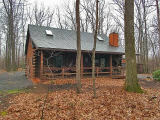 Deep Creek Lake LOG CABIN - Swanton vacation rentals