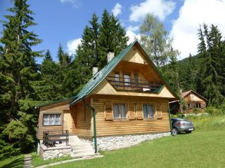 Mountain/Holiday cottage - Liptovsky Mikulas vacation rentals