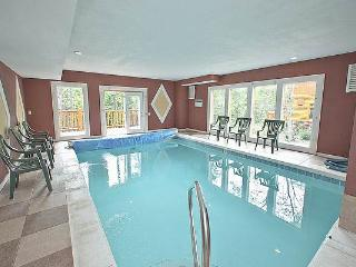 Pool And Movie 1 - Cosby vacation rentals