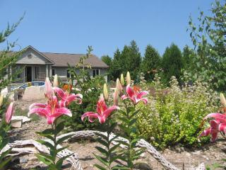 Fox Trail cottage (#878) - Lion's Head vacation rentals