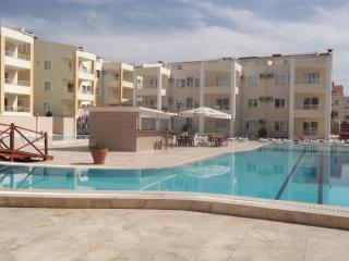 Penthouse/3 Bedrooms/Sleeps 6 - Didim vacation rentals