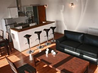 Loft Terrazas III with lake view for 4 persons - Province of Rio Negro vacation rentals