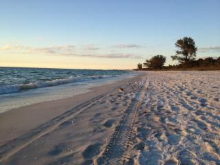 Special Summer Rates!! 1.2m to Vanderbilt Beach! - Naples vacation rentals
