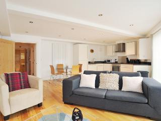 Classy Modern 1 Bedroom London Apartment - London vacation rentals