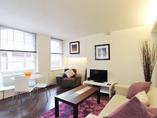 CHARMING 1 BEDROOM APARTMENT - London vacation rentals