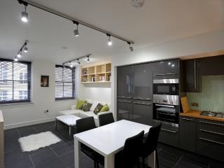 FARRINGDON APARTMENTS - London vacation rentals