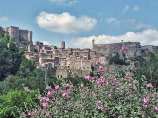 Magical Medieval Tuscan Hilltown - Sorano vacation rentals
