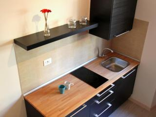YH Apartment - Studio Flat - Turin vacation rentals