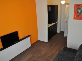 Studio Apartment - Klaipeda vacation rentals