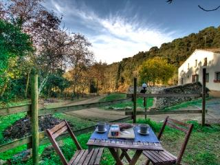 Can Pau d Rosa 45 km Barcelona - Barcelona vacation rentals