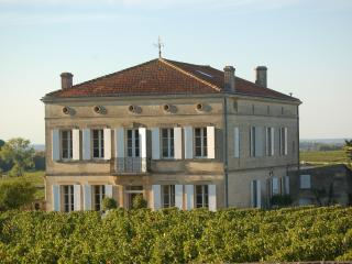 Chateau/villa Saint-Emilion centre, near Bordeaux - Saint-Emilion vacation rentals