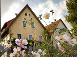 Vacation Apartment in Radebeul - comfortable, central, bright (# 5285) - Weinboehla vacation rentals