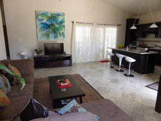 Wide Ocean View with huge pool deck housing a 12,700 gal pool; palapa bar with BBQ, private stairway from Master bedroom to pool - Cabarete vacation rentals