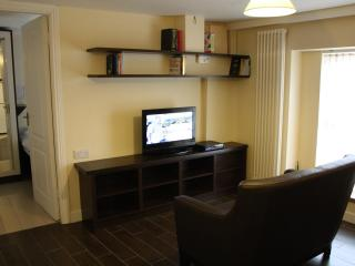 V small, v clean, modern city centre flat c/w wifi - Cork vacation rentals